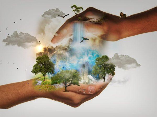 altruisme et nature