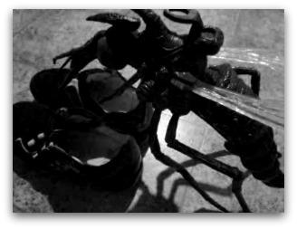 moustiques chaussures