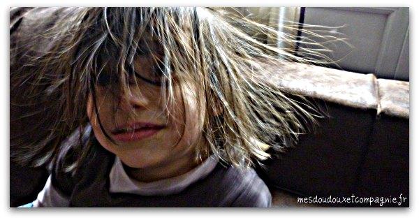 cheveux_dresser