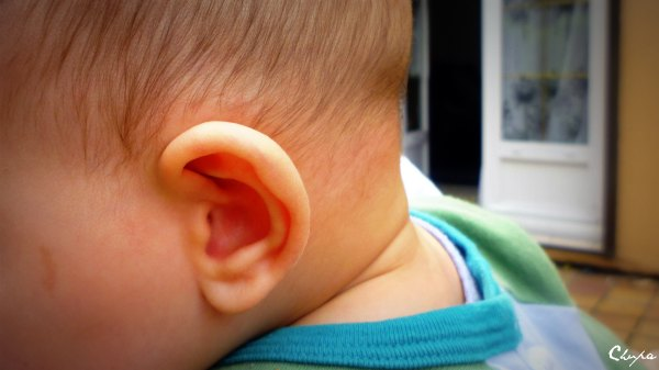 oreille-bebe