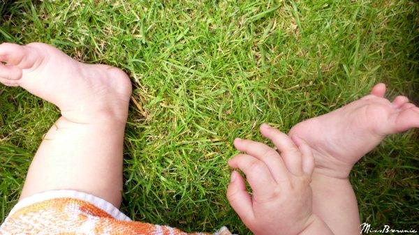 petits-pieds