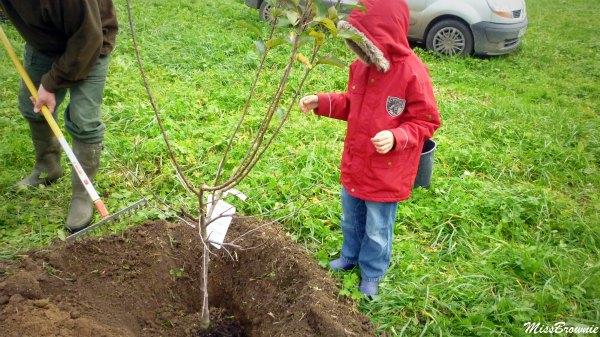 un enfant un arbre