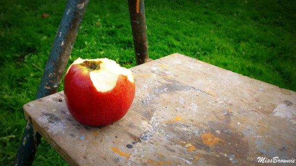croquer-dans-la-pomme