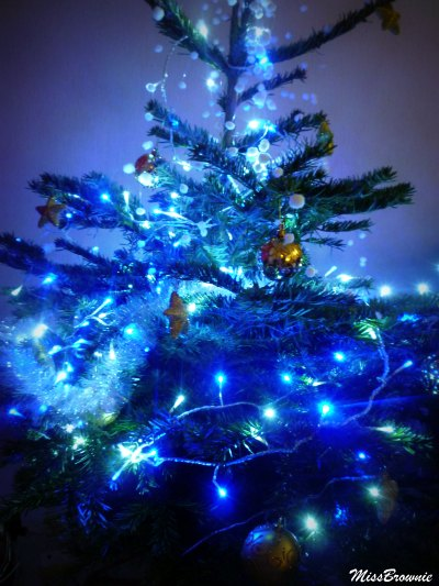 sapin version bleu eneige