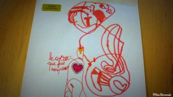 organes-corps-humain
