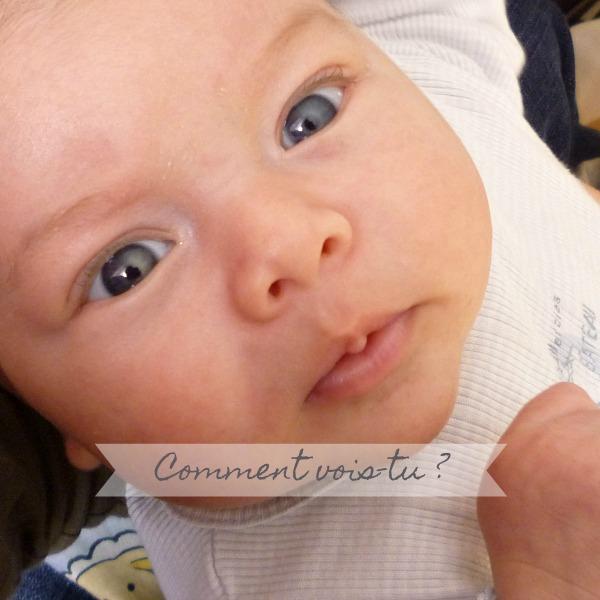 54b3f8db151935 la vision de bébé de 0 à 12 mois - comment il voit le monde