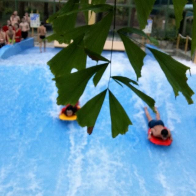 de eemhof center parcs surf