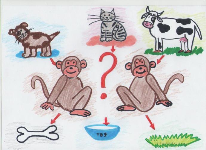 Nagy Noel_ A majmok szökése