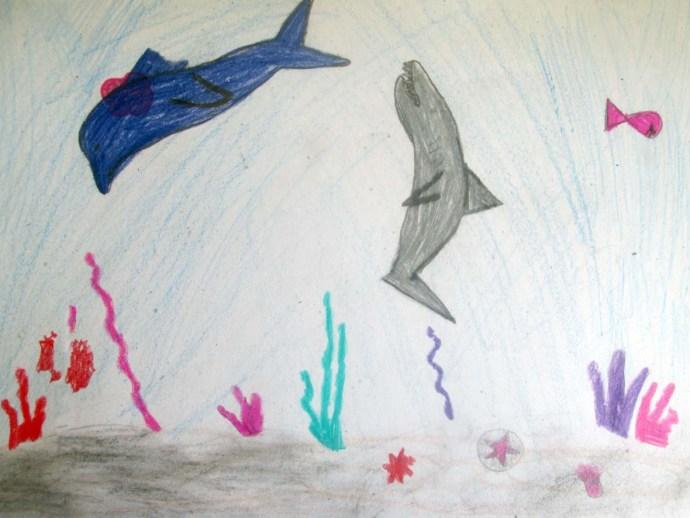 Tóth Laura Egy delfin_Bócsi Lea