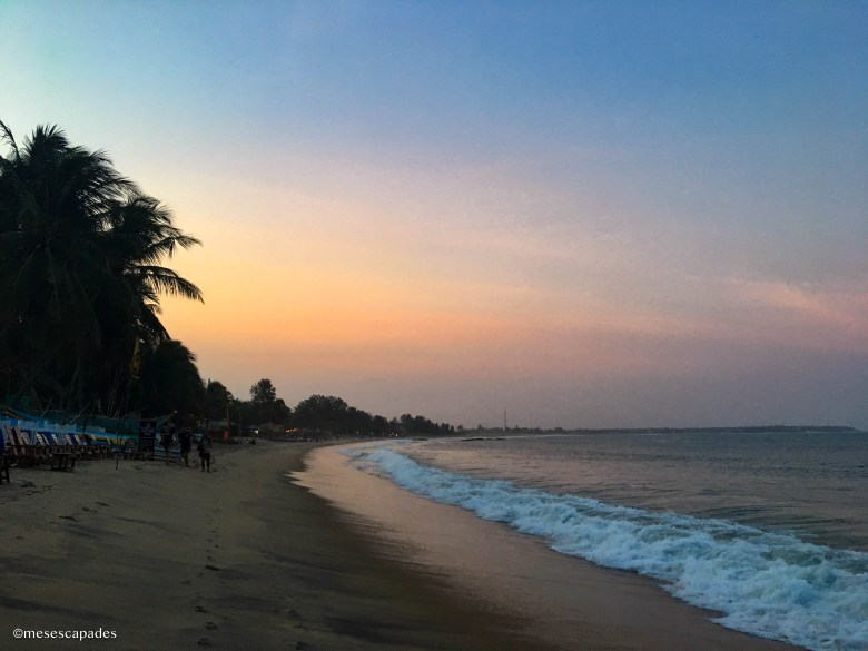 Que faire à Arugam Bay ?