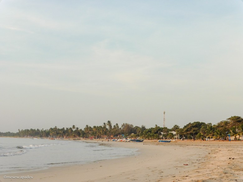 Découverte du Sri Lanka au petit matin