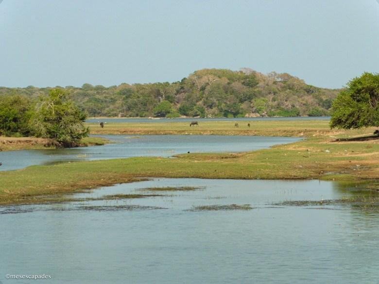 Quels sont les plus beaux paysages du Sri Lanka ?