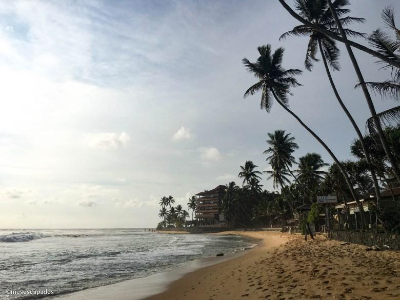 Quelles plages du Sri Lanka découvrir ?