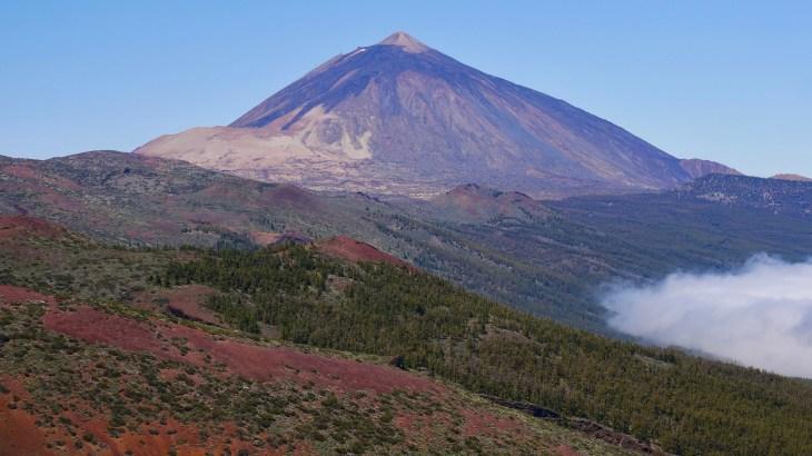 Randonnées à Tenerife : passage par la Corona Forestal et arrêt à différents points de vue sur le pic du Teide