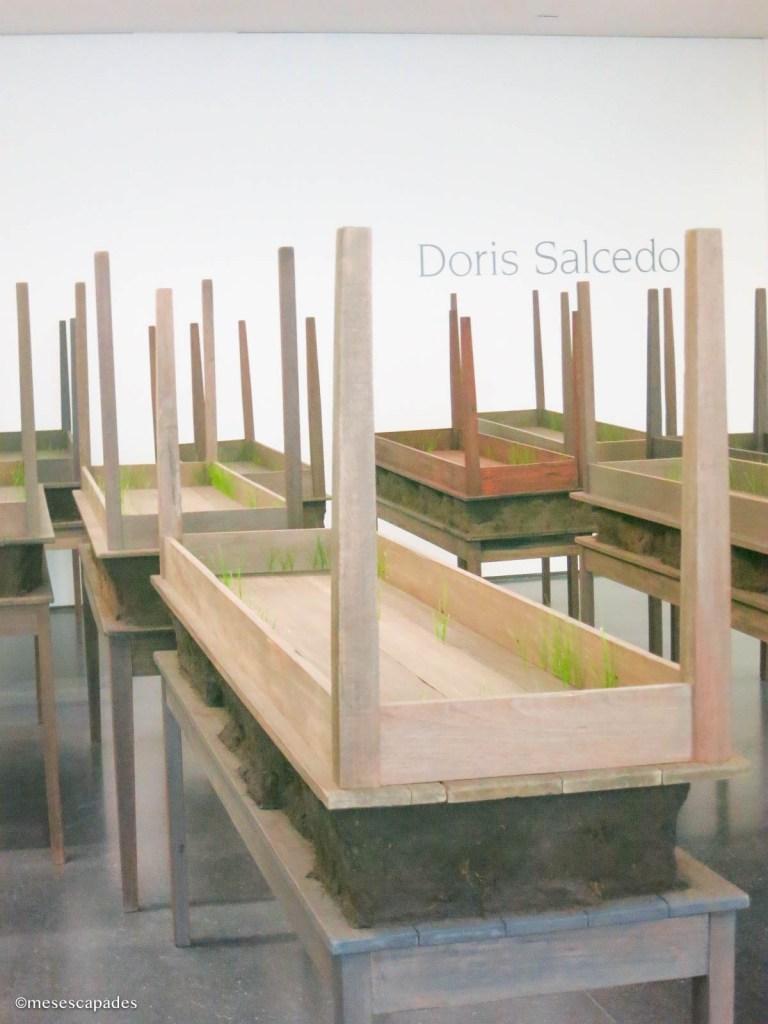 Exposition Doris Salcedo