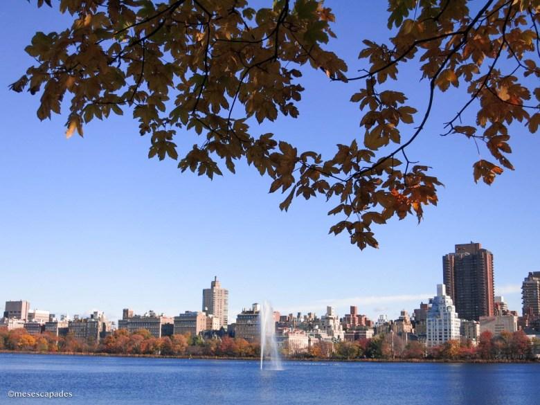 Vue sur les buildings new yorkais depuis Central Park