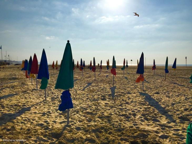 Les parasols colorés de Deauville