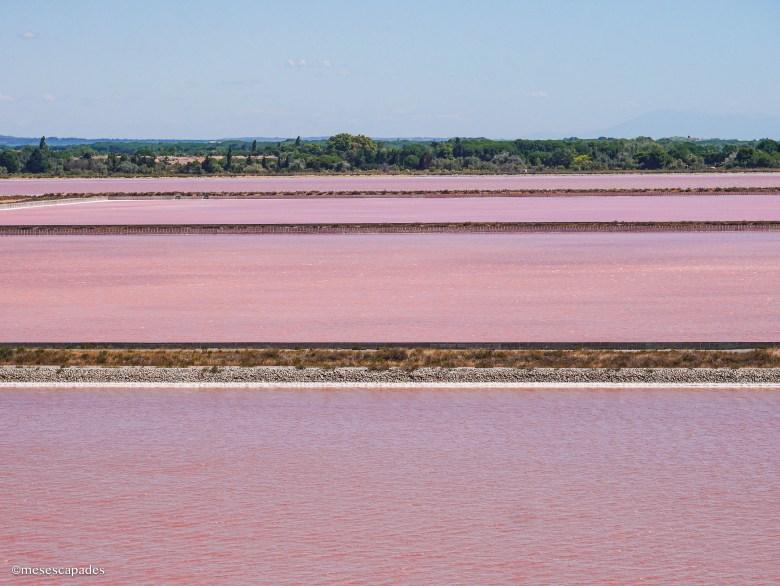 Les salins roses d'Aigues-Mortes