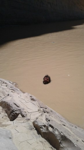 Matt Meshbane Lost His Head and They Found It Floating in the Rio Grande