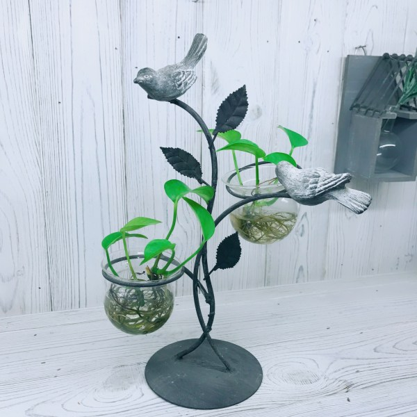 Birds Hydroponic Glass Planters