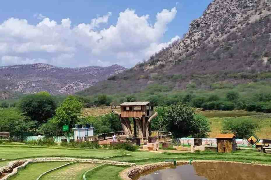 biodiversity park alwar rajasthan