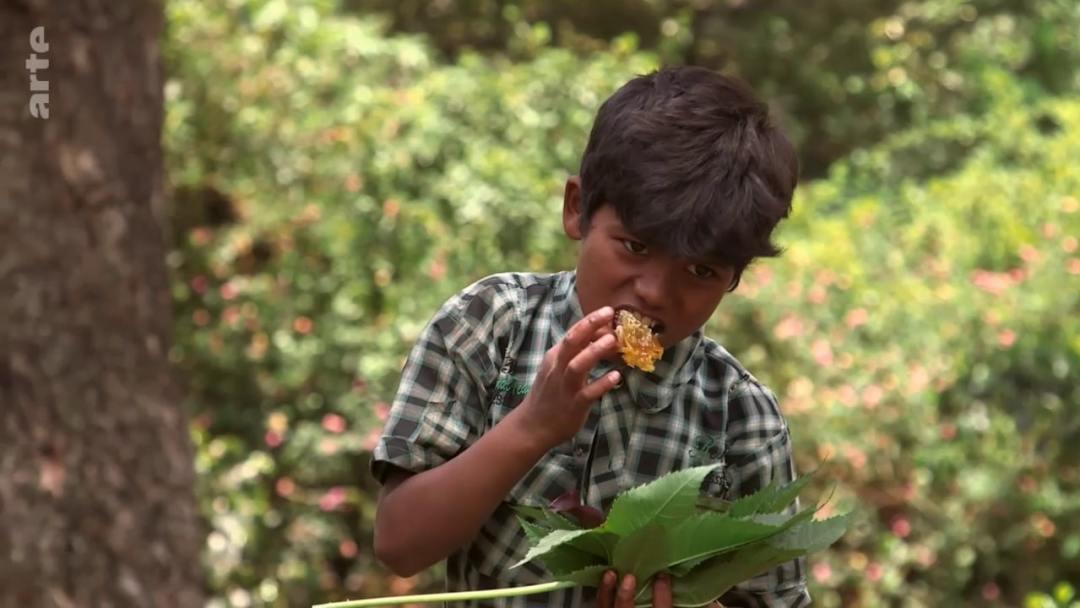 enfant manger miel