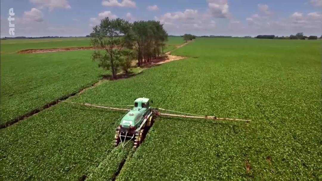 pesticides champ