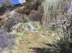 One of several small waterfalls at Little Jamaica, near Littlefield, AZ - September 2014
