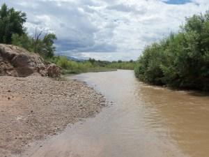 Virgin River at Little Jamaica, near Littlefield, AZ - September 2014