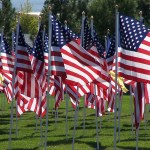 Flags over Mesquite arrive Sunday