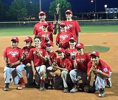 2016 Champions of Majors Baseball Division is Mesa View Home Care.