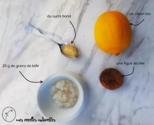 faire du kefir de fruits