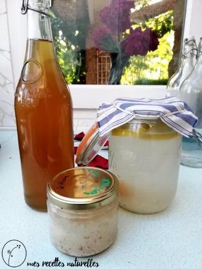 kéfir et kombucha maison : les boissons probiotiques pour entretenir on immunité