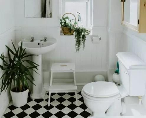 recette nettoyant pour les toilettes
