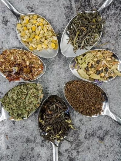 herbalisme : utiliser les plantes médicinales