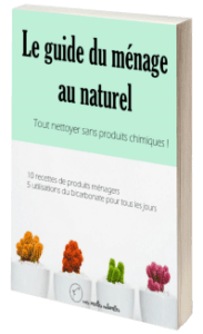 Livre gratuit : les recettes du ménage au naturel