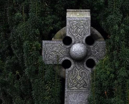 Le gui : plante magique et fete celtique