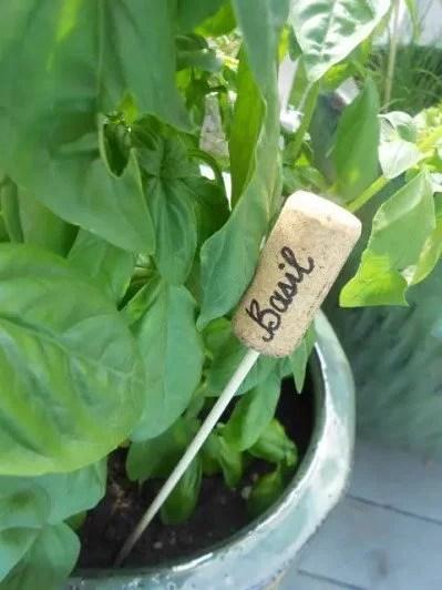 marque plante DIY en bouchon de bouteille