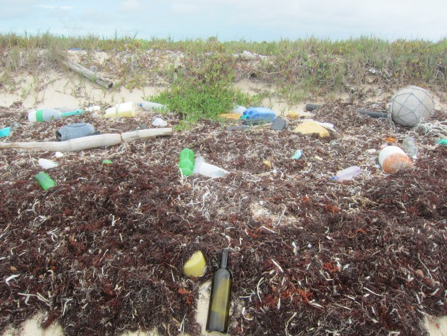 Finding Messages in Bottles Leads to Environmental Lesson