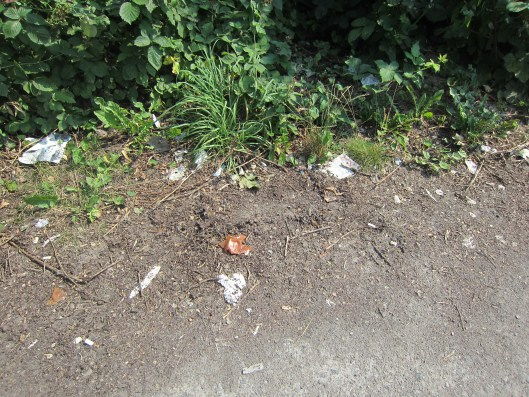 Here's a game! How many cigarette butts can you count?