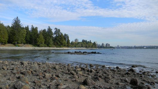 Canadian boy's message in a bottle: The beach where Ines found her message in a bottle.