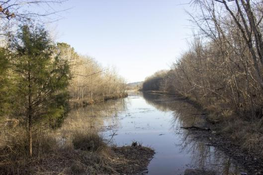 The branch of the Coosa River where Shea Shaneyfelt found Julie Watson's 35 year old message in a bottle.