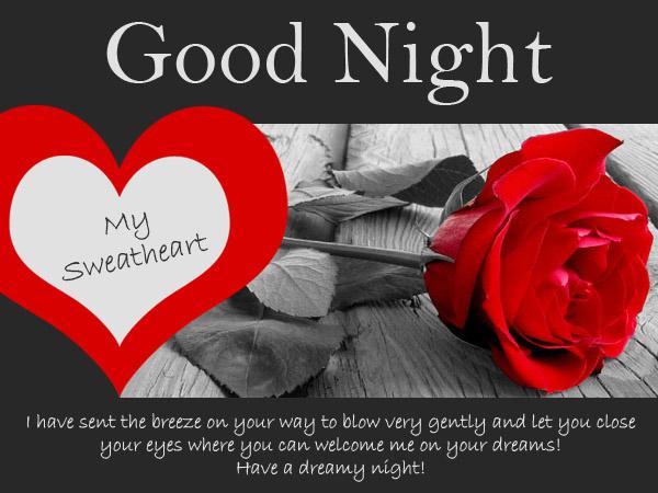 Good Night Text Girlfriend