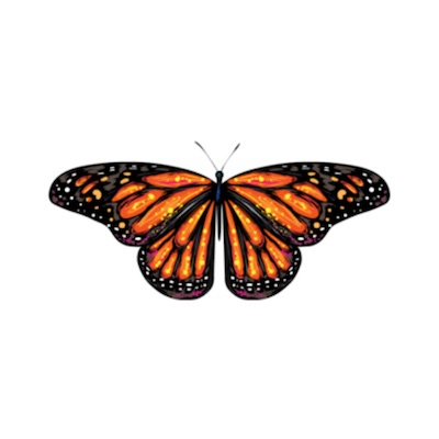 butterfly stickers free for iOS messages