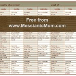 Messianic Mom's Daily Chore Chart