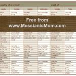 Messianic Mom's Daily Chore Chart