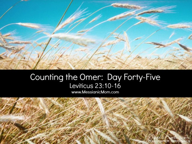 Day Forty Five Omer Count