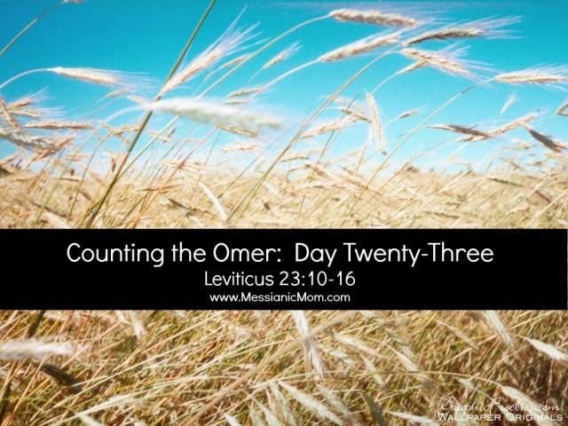 Day Twenty Three Omer Count