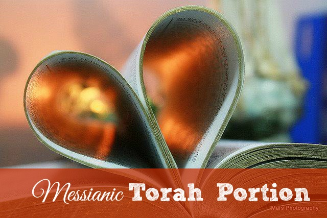 Messianic Torah Portion