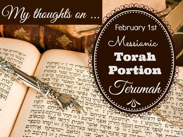 My thoughts on Torah Terumah